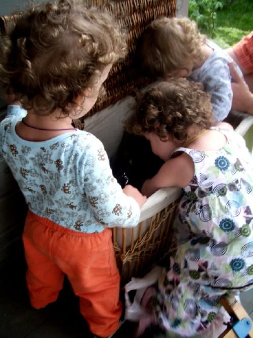 Тройняшки - два брата и сестра